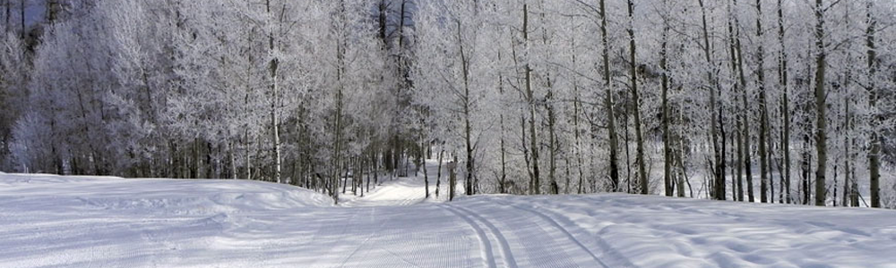 Nordic-Header-Trail